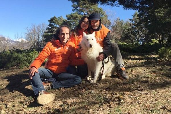 El cazador maltratador de Villa del Prado, condenado a prisión