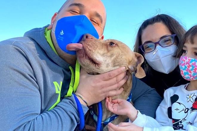 Rocco ha sido adoptado.
