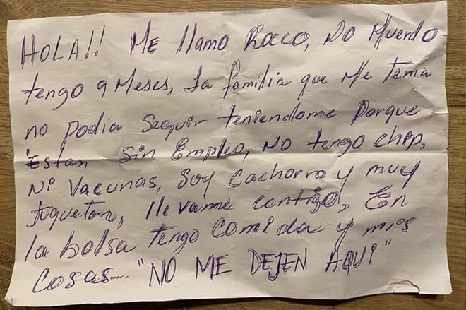 CRÓNICA DE UN ABANDONO ANUNCIADO.