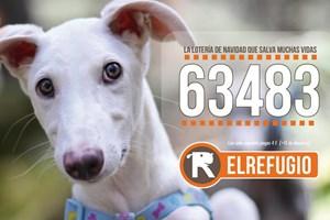 La lotería solidaria de El Refugio ya está a la venta.