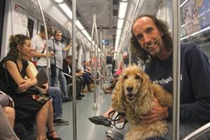 El Refugio pide la entrada libre de perros al Metro de Madrid