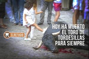 Hoy ha muerto el Toro de Tordesillas para siempre.