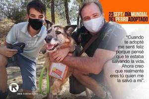 Hoy es el Día Mundial del Perro Adoptado
