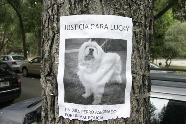 Un Policía local de Zaragoza mata a un perro de un tiro