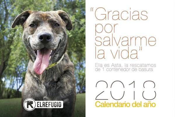 El Calendario solidario de El Refugio ya está a la venta!!