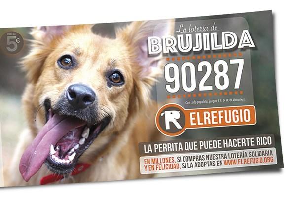 La lotería solidaria de El Refugio ya está a la venta!