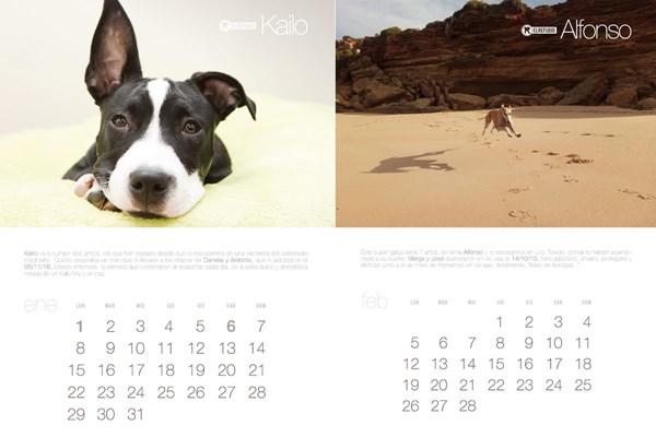 El Refugio presenta el calendario que salva vidas los 365 días del año.