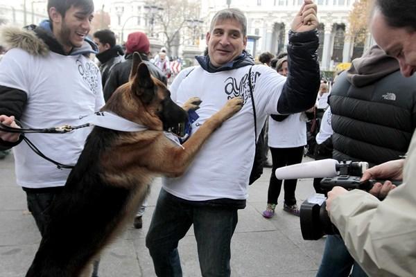 Un millar de personas con sus perros hoy en la #Sanperrestre.