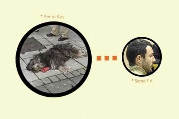 El tipo que mató a patadas al perrito Blas, ha sido condenado  a 8 meses de prisión
