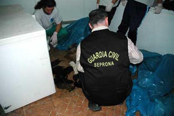 EL REFUGIO PIDE 4 AÑOS DE PRISIÓN PARA LA PRESIDENTA DE LA PROTECTORA PARQUE ANIMAL DE TORREMOLINOS.