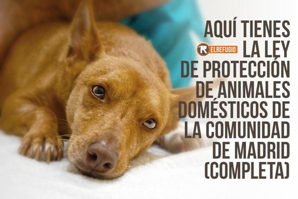 LEY DE PROTECCIÓN DE ANIMALES DOMÉSTICOS DE LA COMUNIDAD DE MADRID.