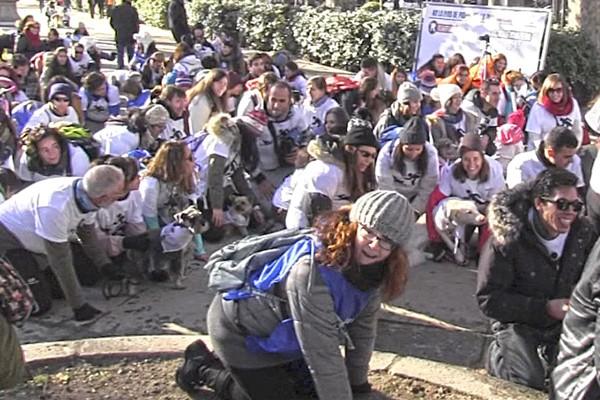 700 madrileños acaban #akuatropatas en la sanperrestre contra el sacrificio de animales abandonados