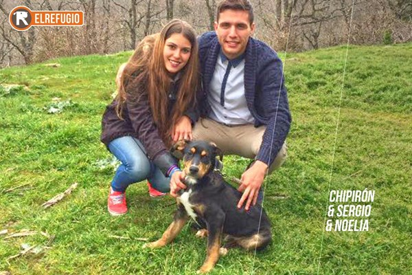 20 nuevas adopciones, 20 nuevas  familias: YABADABADÚÚÚ!!!