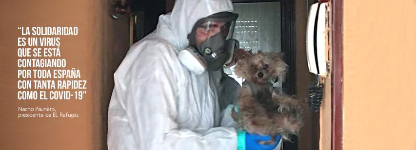 El Refugio crea la Unidad de Intervención Solo En Casa, para socorrer a perros de personas hospitalizadas por Coronavirus.